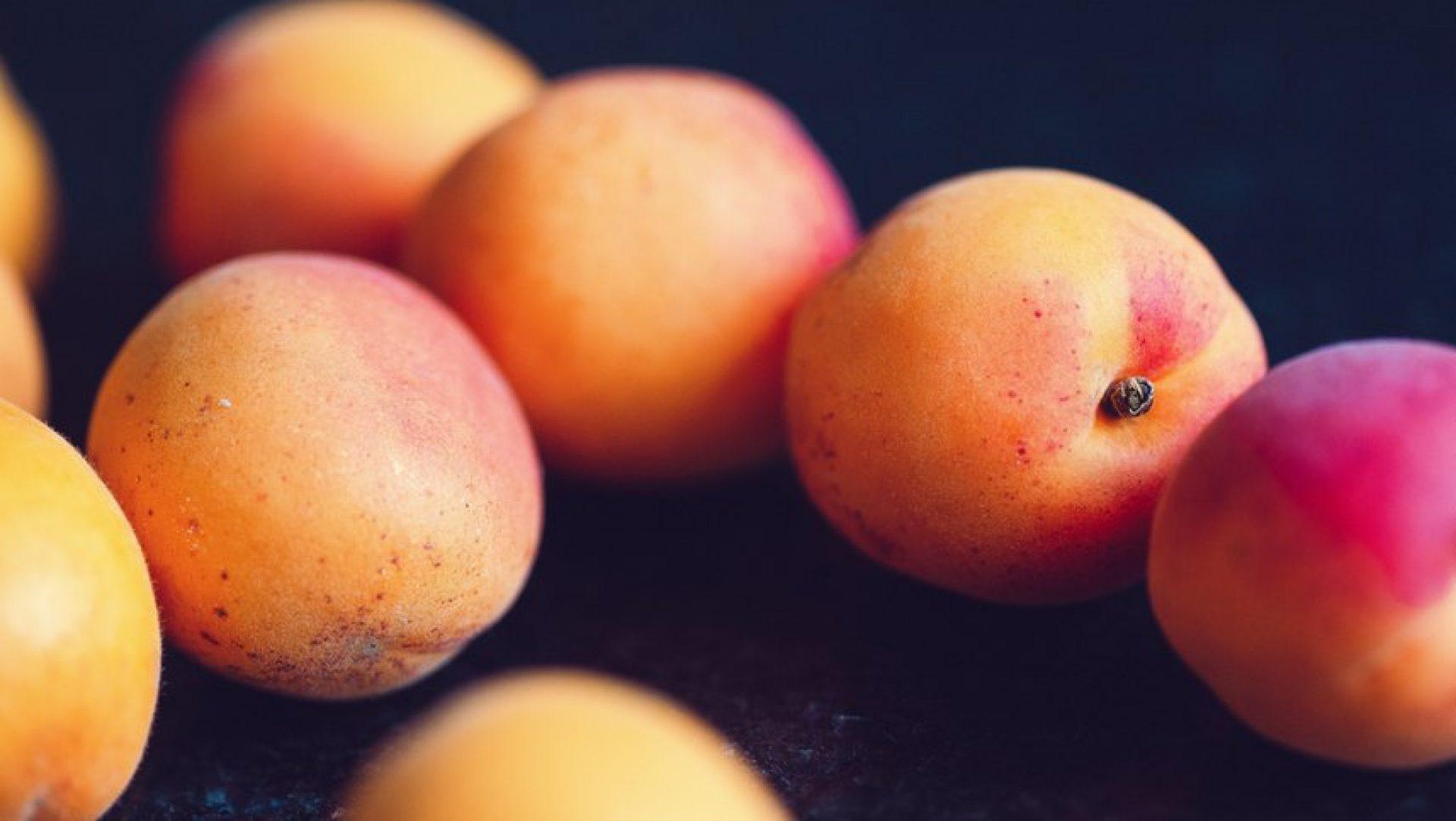 Třebenické meruňky